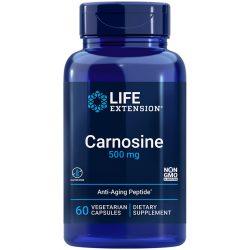 Carnosine 500 mg 60 vegetarian capsules potent anti-aging supplement