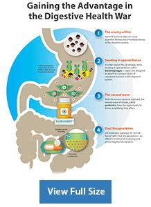 FLORASSIST Balance 30 liquid vegetarian capsules info chart