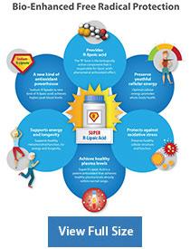 Super R-Lipoic Acid supplement information chart