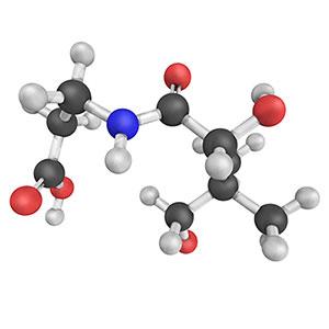 BioActive Complete B-Complex what is pantothenic acid