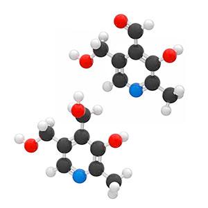 BioActive Complete B-Complex add why we add pyridoxine and pyridoxal