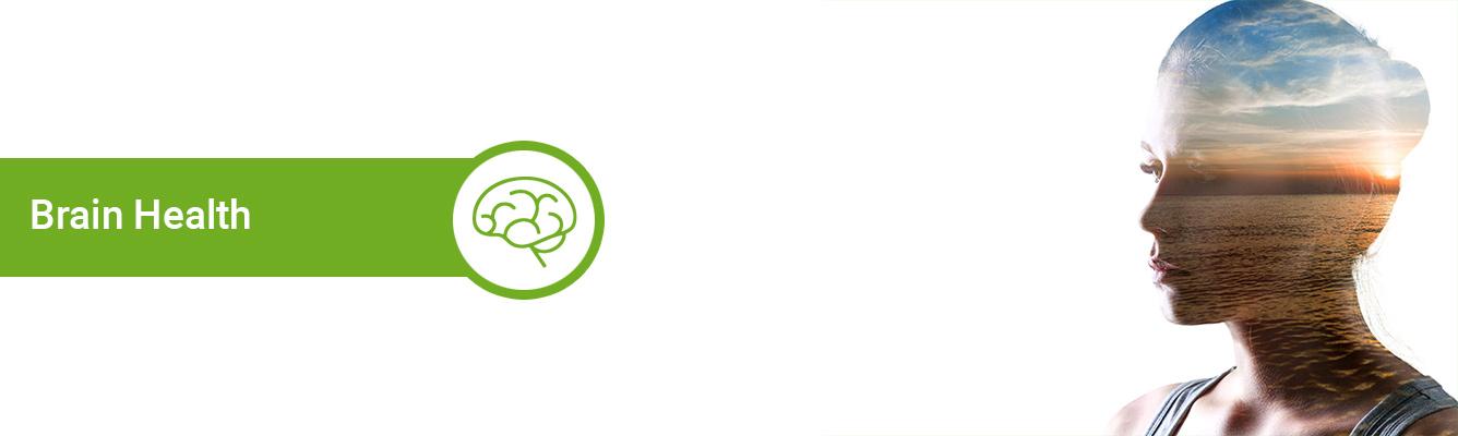 Life Extension Brain Health Supplement Formulas