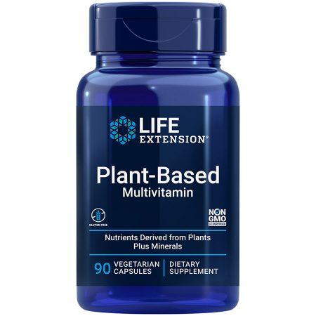 Plant-Based Multivitamin 90 vegetarian capsules