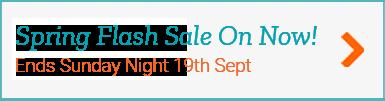 Spring Flash Sale Button link